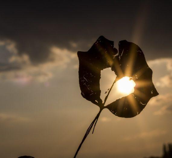 Solen värmer frusen själ